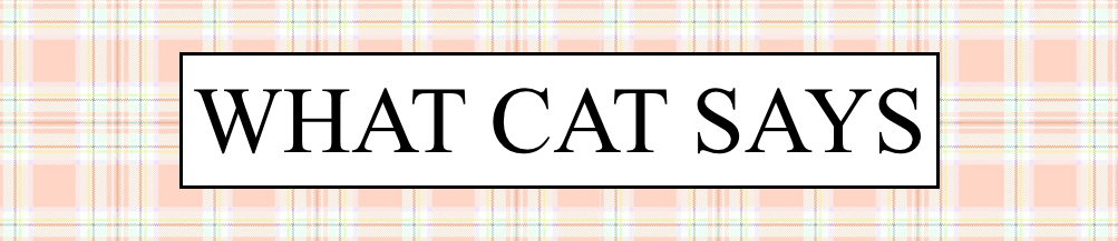 What Cat Says