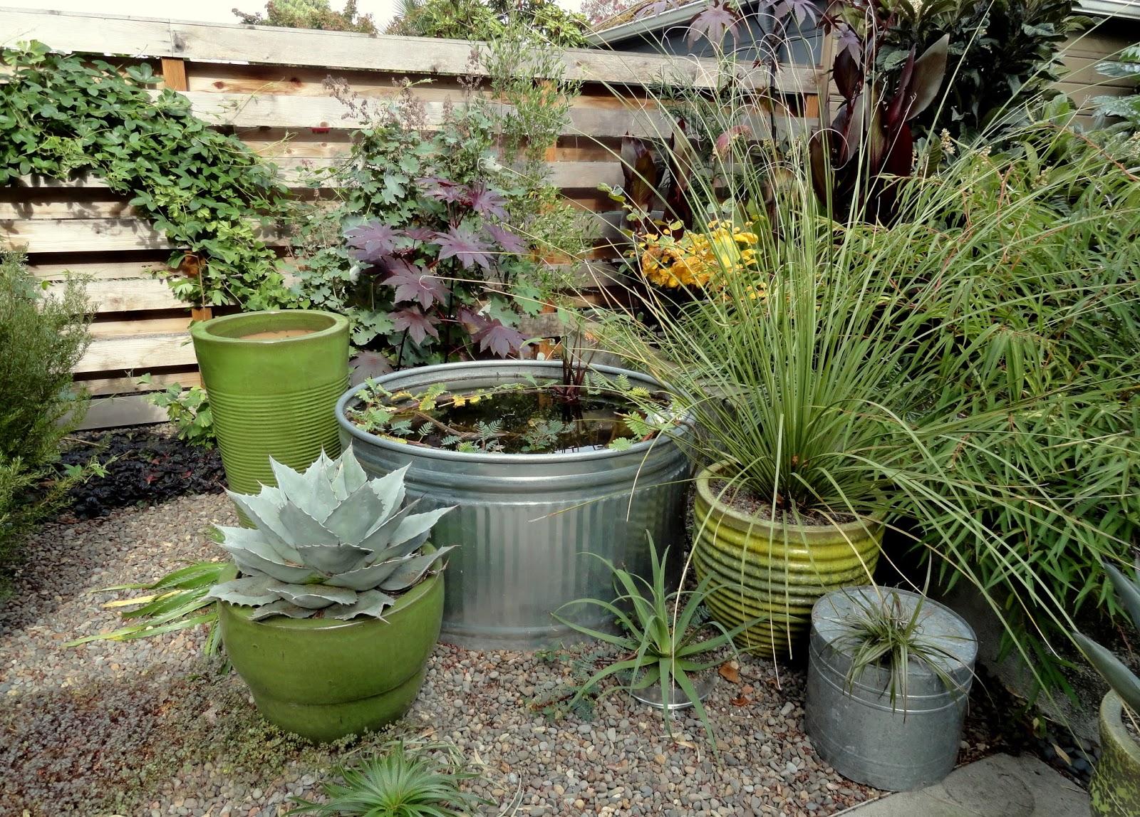 danger garden operation embrace autumn it u0027s been easy