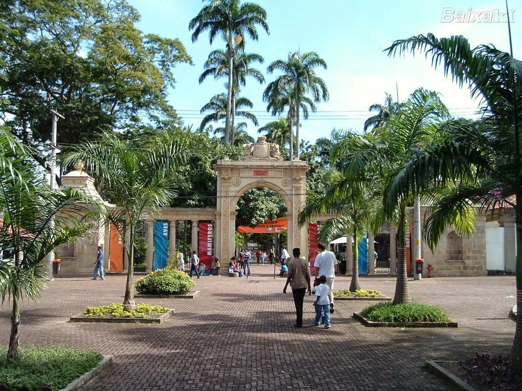 festa no jardim zoologico: PARA A TEMPORADA DE PASSEIO NOTURNO NO JARDIM ZOOLÓGICO DO RIO