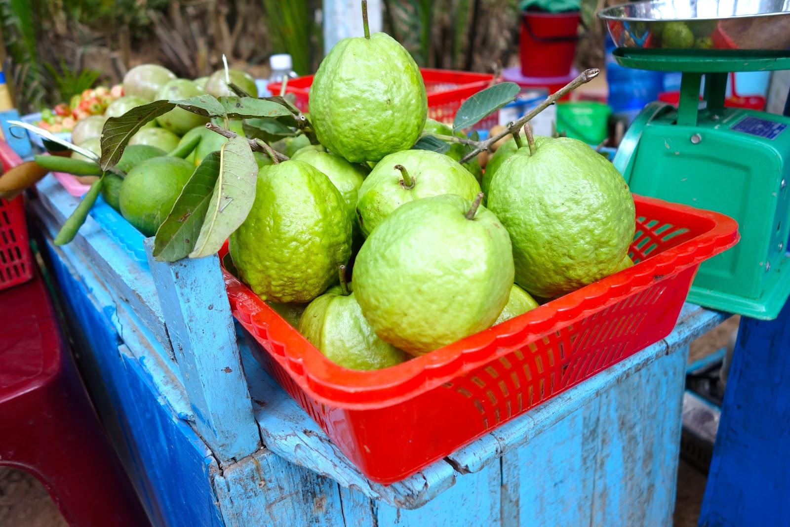 Vietnamese guava fruit