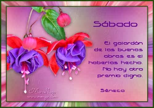 mgc-Flores14_06-Sabado_Tube-Sarita.jpg