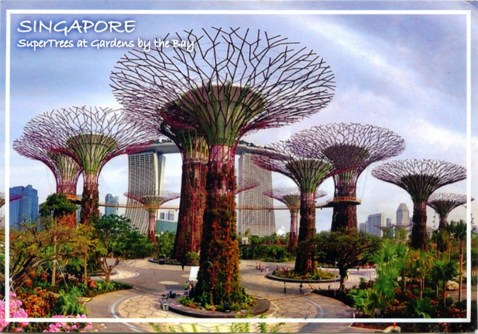 , COME TO MY HOME!: 0974 SINGAPORE  Supertrees in Gardens by the Bay