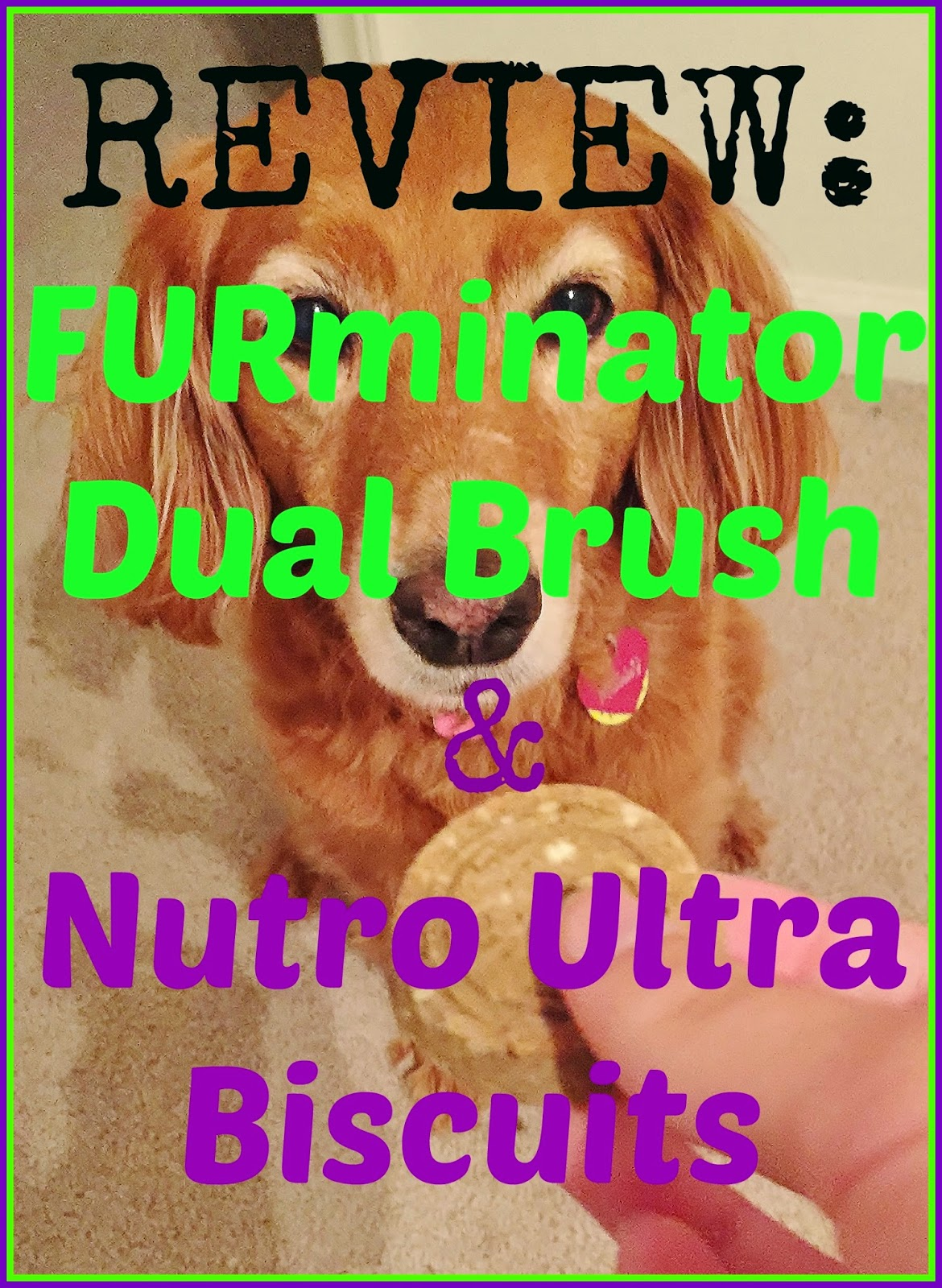 Pets, Review, FURminator Dual Brush, Nutro Ultra Buscuits, Treats, Dog Brush