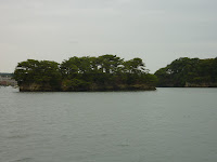 A flat and short island in matsushima bay covered in pine trees