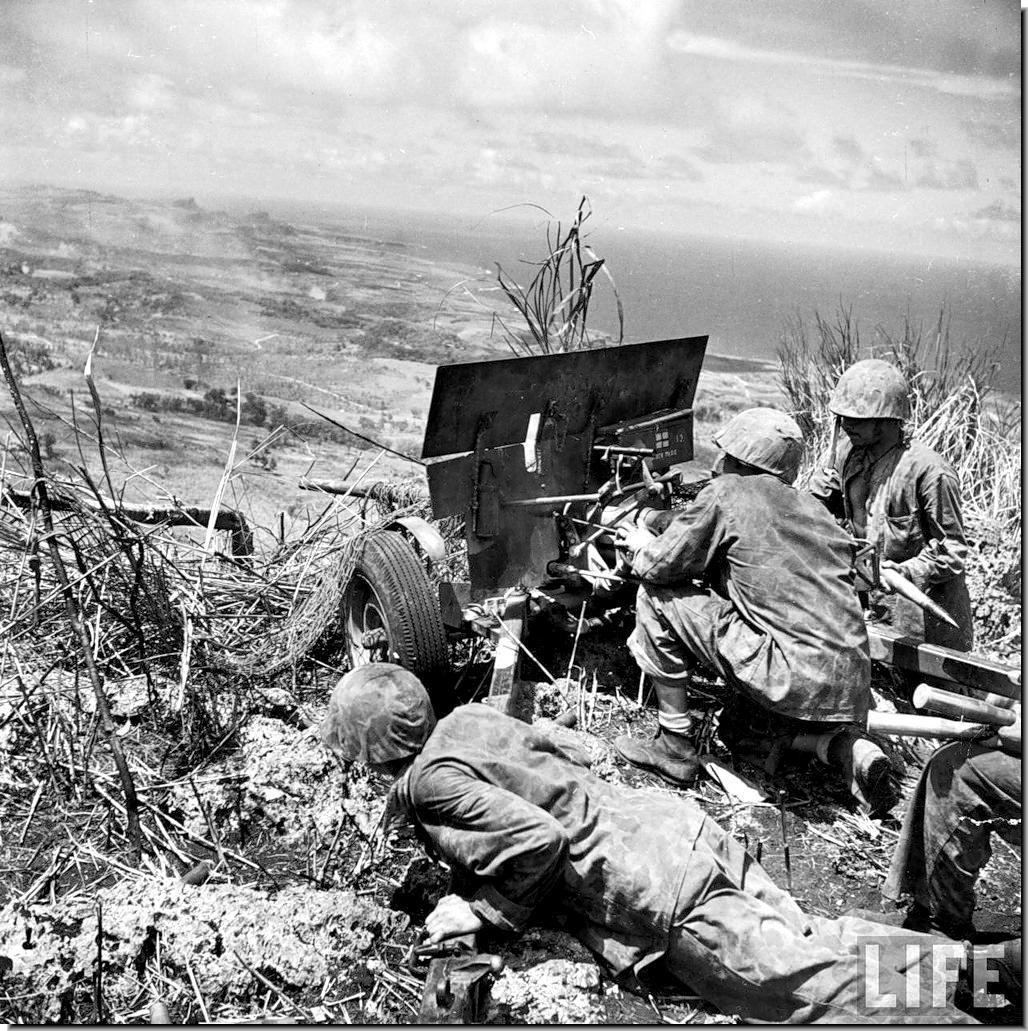 タポチョ山の山頂に陣取る米軍兵...