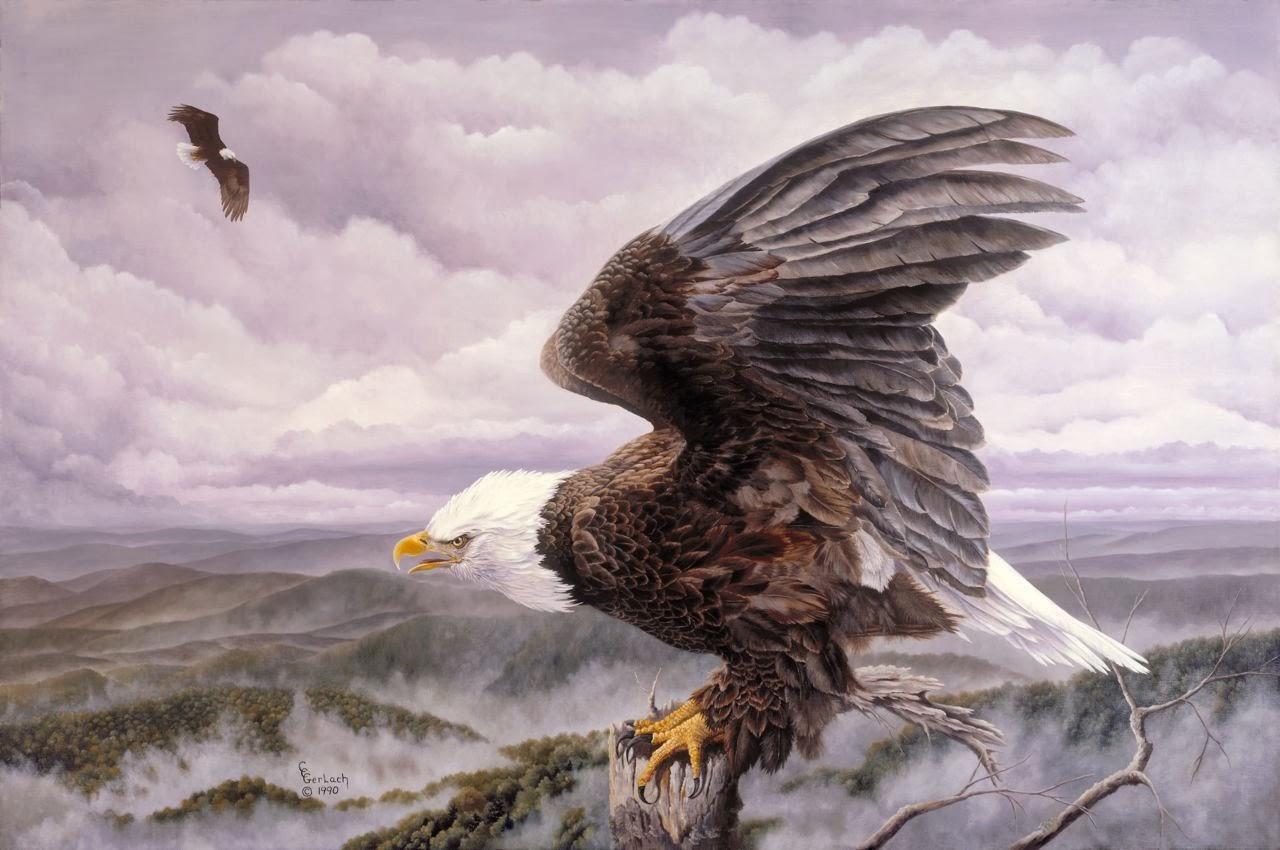 Majestic eagle sasquatch