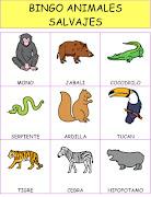 Bingo de Animales Salvajes. Hemos visto la peli del Rey León y queremos .