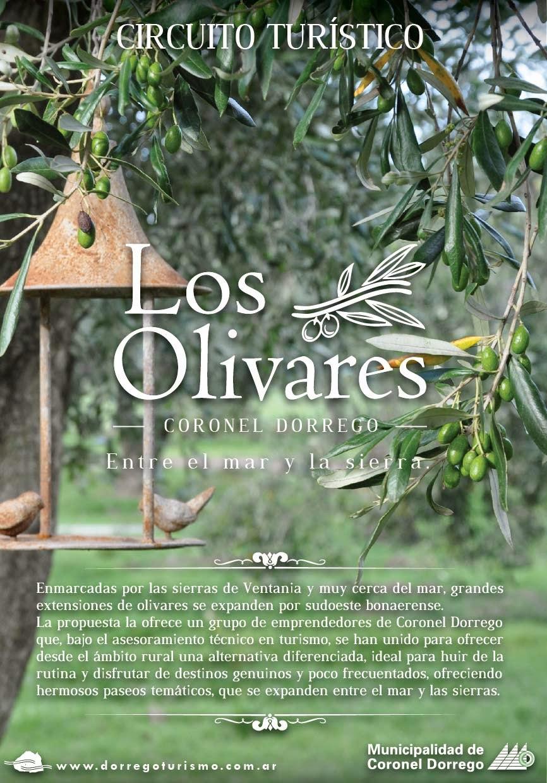 CIRCUITO TURISTICO                             LOS OLIVARES