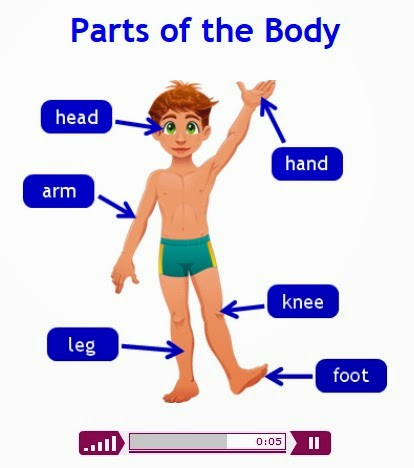 http://www.parkfieldict.co.uk/infant/body/body.html