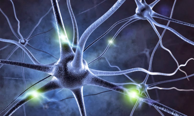 """Neurons"""""""