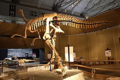 Esqueleto Gigantoraptor