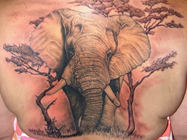tattoos for girls: Elephant Tattoo Design Idea Images Photos