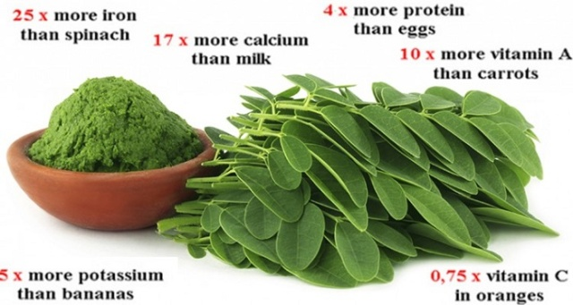 this-green-herb-could-be-the-cure-to-5-different-types-of-cancer-including-ovarian-liver-lung-and-melanoma