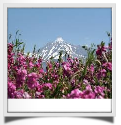 mount shasta guide tour, mt shasta spiritual retreat