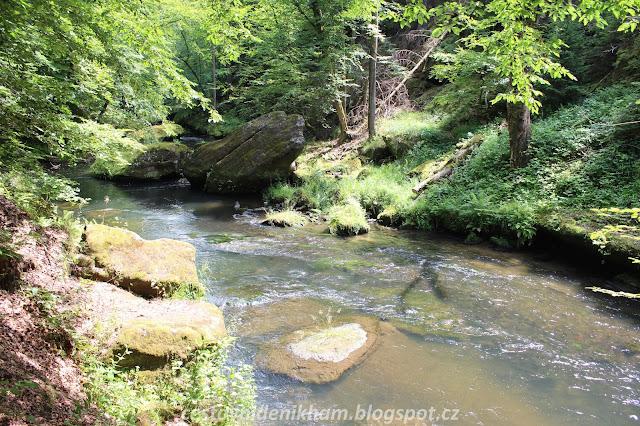 cesta k soutěskám v NP České Švýcarsko // Bohemian Switzerland National Park