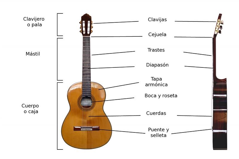 Aprender guitarra desde cero: Las partes de una guitarra