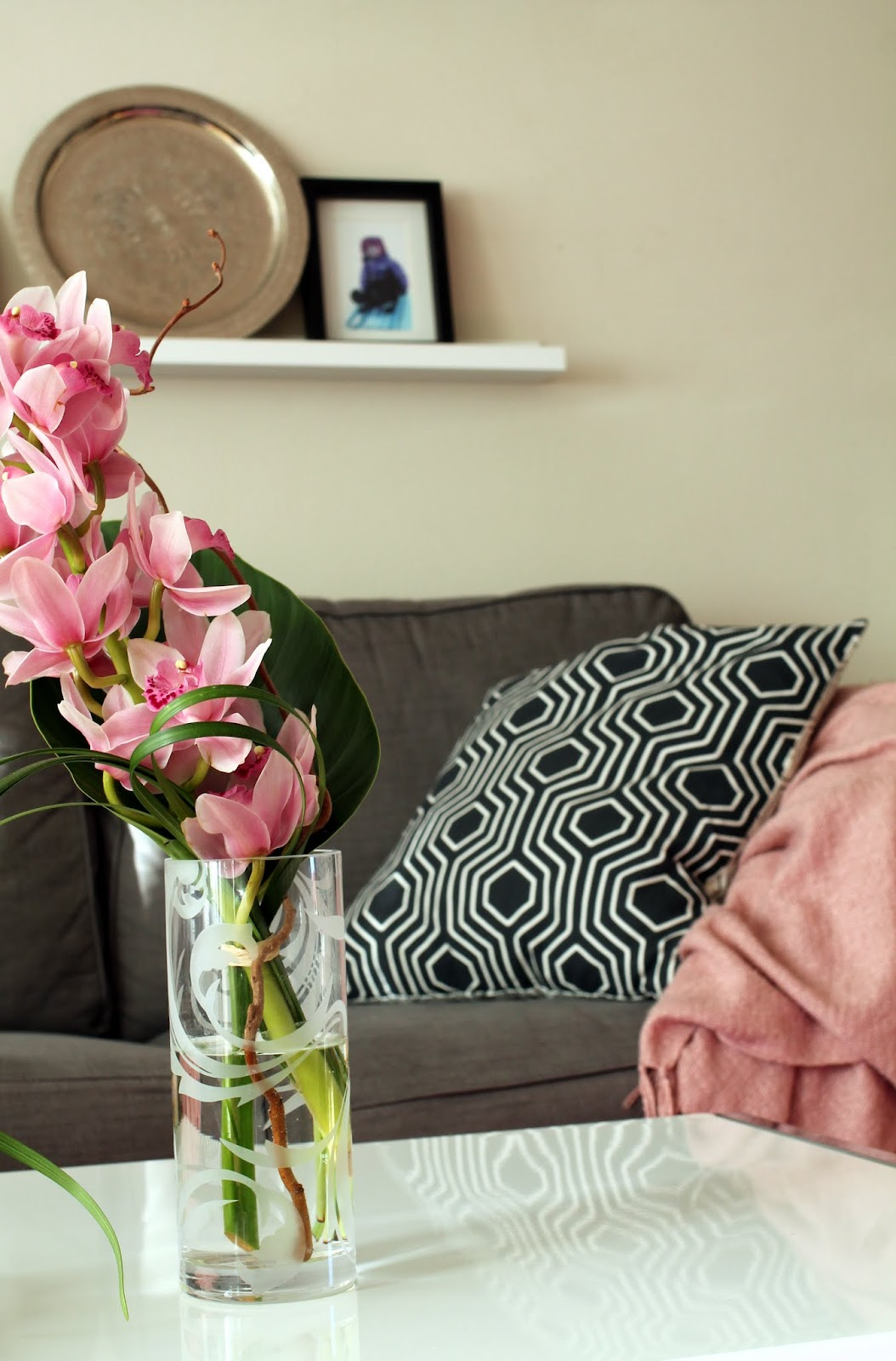 kymbidi orkidean oksa