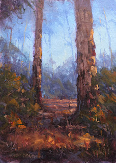 workshop oil painting - karri trees - by andy dolphin
