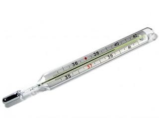Termometer Badan/Klinis/Demam