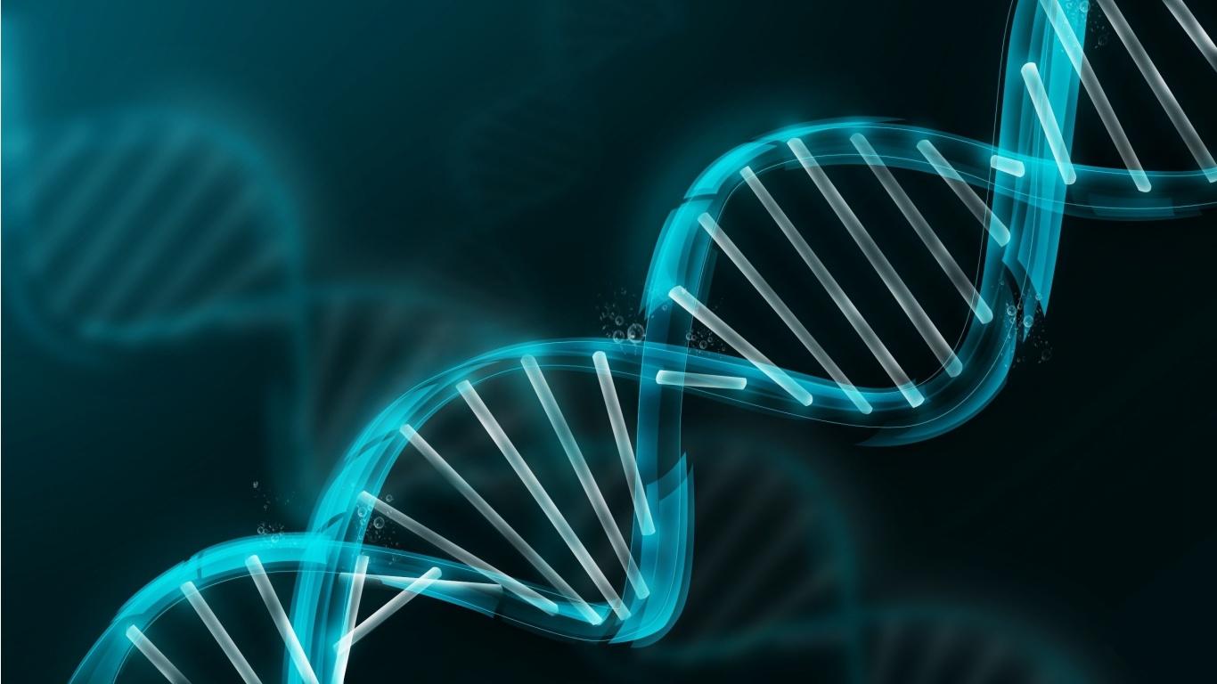 http://3.bp.blogspot.com/-FQdxCfvYndA/UF_Y4-QnSBI/AAAAAAAAAy8/bxmnnesbFYo/s1600/dna_molecule_abstract_3d_hd_wallpaper-1366x768.jpg