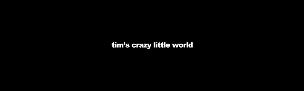 tim's crazy little world