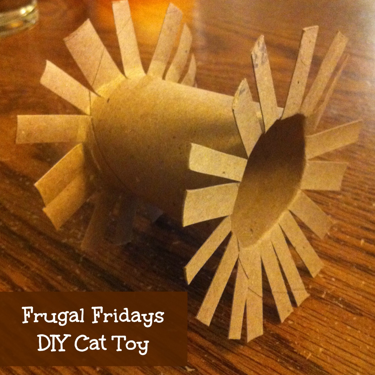 Sunshine maker meg frugal fridays diy cat toy for How to make a cat toy out of a box