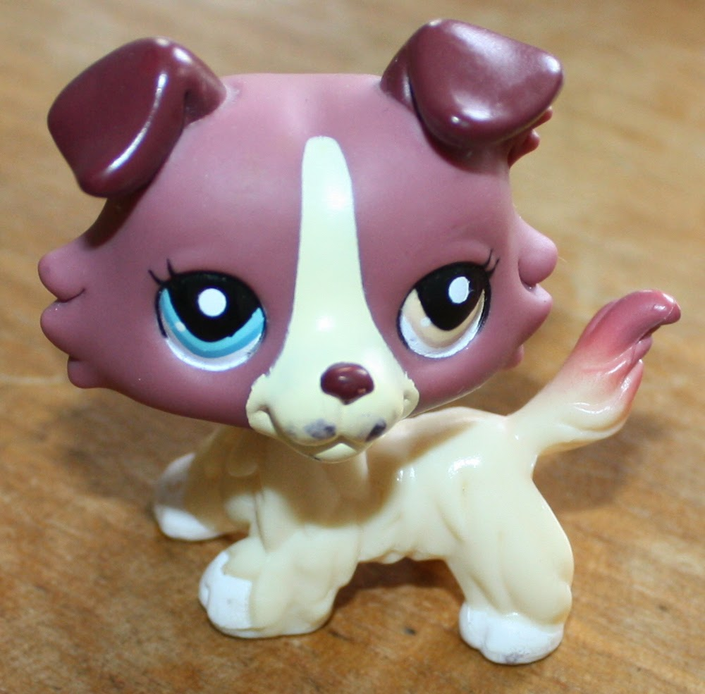 rare littlest pet shop found at yard sale
