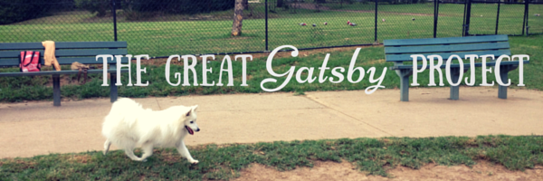 The Great Gatsby Project banner