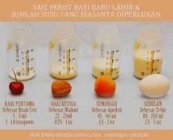 berapa oz susu yang bayi perlu