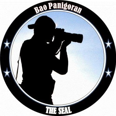 My Seal