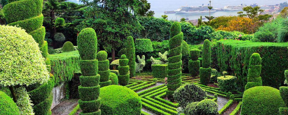 Arredo e design arte topiaria piante ed alberi come - Giardini bellissimi ...