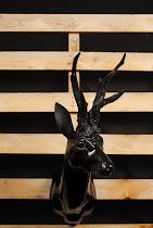 cervo nero