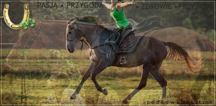 ,, Podkowa '' - blog cały poświęcony koniom , jeździe konnej i bryczesom.