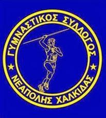Γ. Σ. ΝΕΑΠΟΛΗΣ