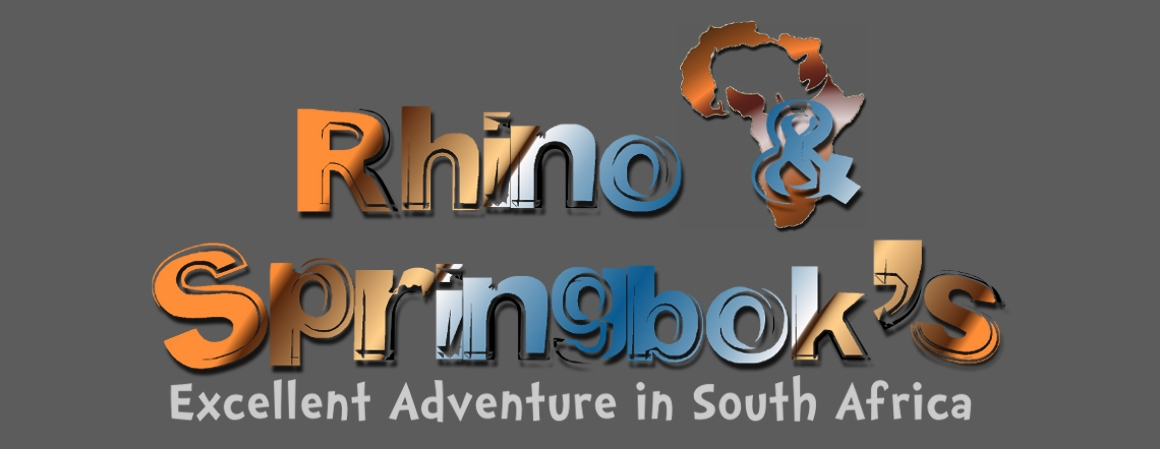 Rhino &amp; Springbok&#39;s Adventure in South Africa