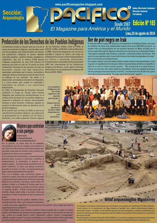 Revista Pacífico Nº 185 Arqueología