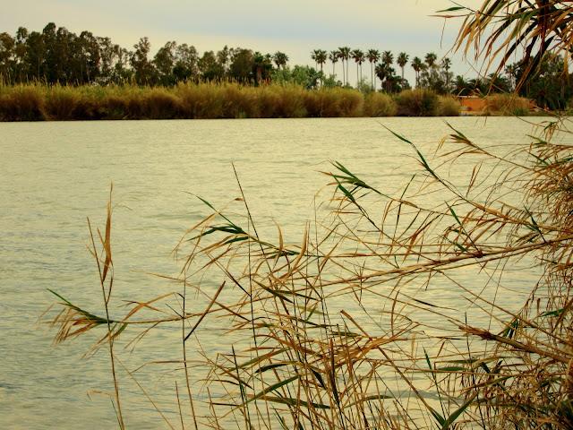 delta ebro carrilet desembocadura rio ebro