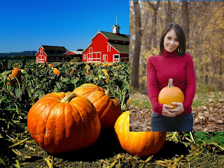 Pumpkin Farming Business