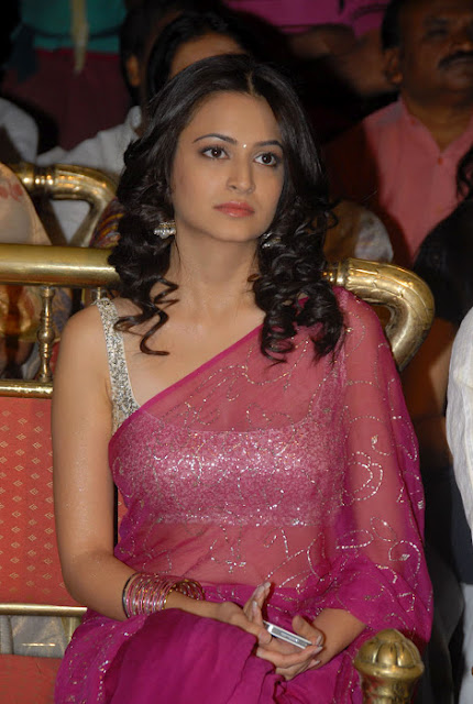 Kriti Karbanda Beautiful Pictures in Saree