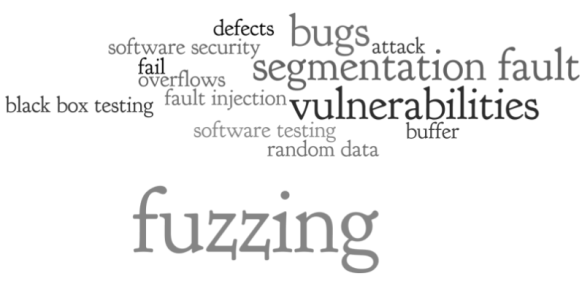 Image result for fuzz testing