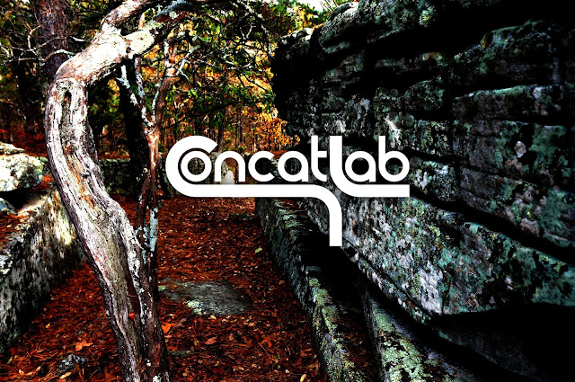 high contrast nature photo with white concatlab logo