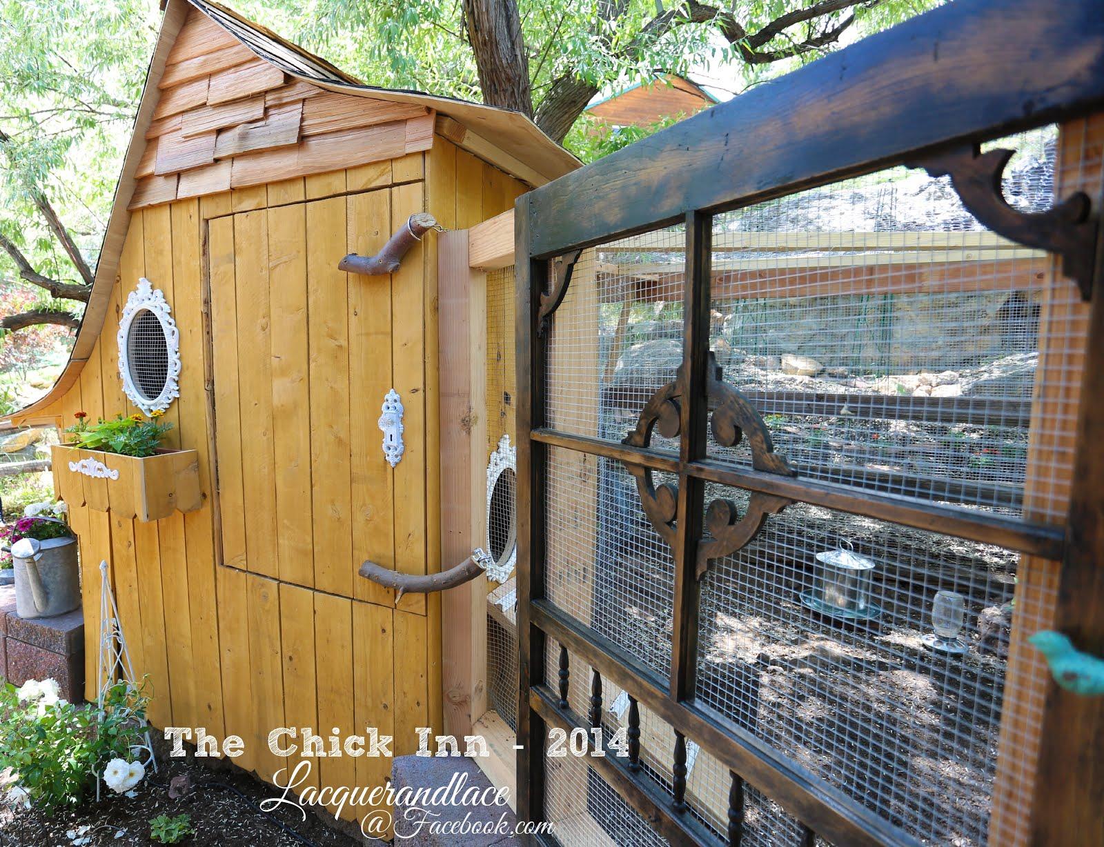 lacquerandlace backyard chicken basics