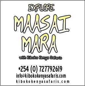 Book a Safari to Mara!
