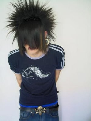 emo hairstyle gallery. Boys Emo Hairstyle Photo