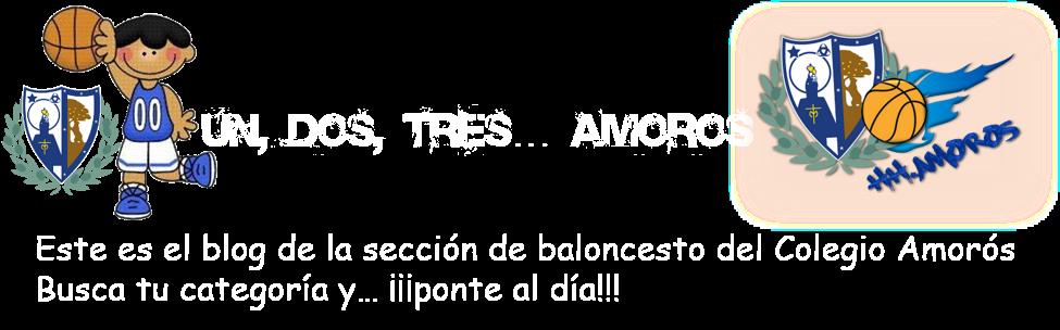 Baloncesto Amorós