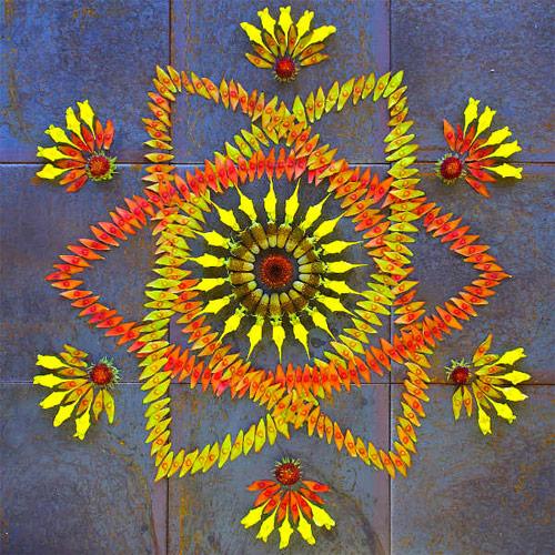 mandala hecha con flores naturales