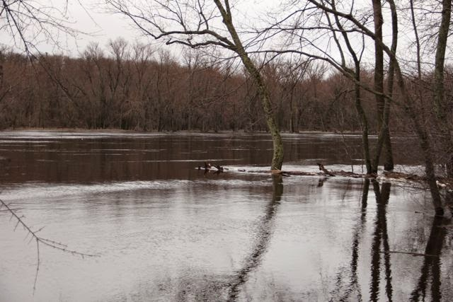 high water, St. Croix River, Spring 2014