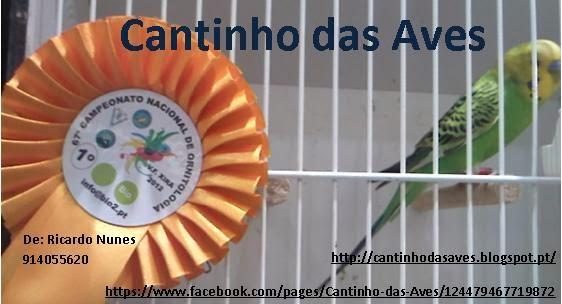 Cantinho das Aves