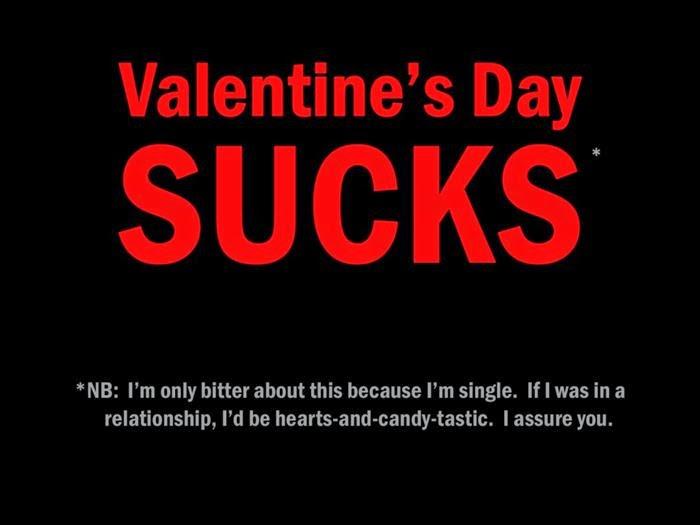 Happy Valentines Day Funny Pics
