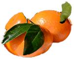 orange améliore la mémoire et l'intelligence